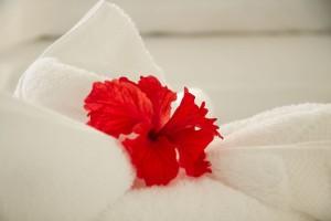Hotel Horizontes Room Flowers