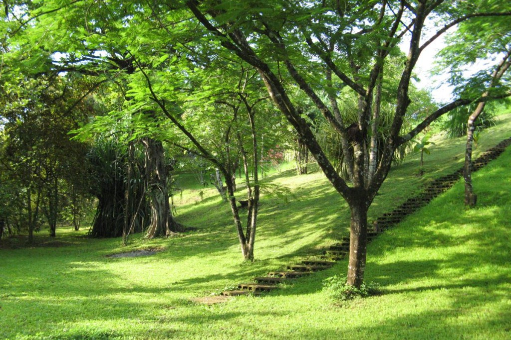 Hotel Horizontes Botanical Garden