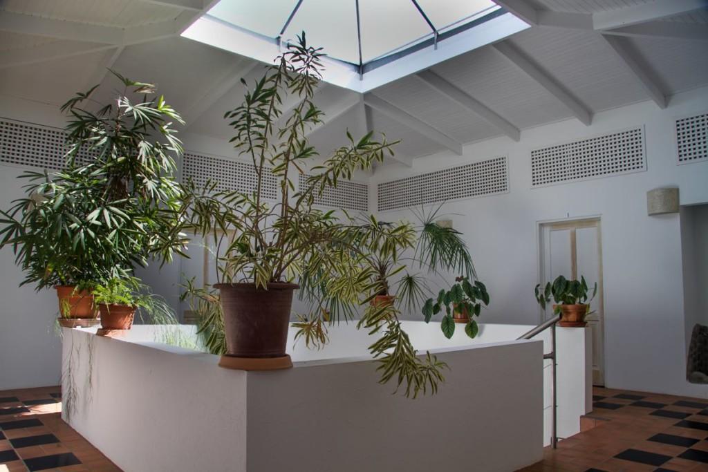 hotel-horizontes-de-montezuma-atrium