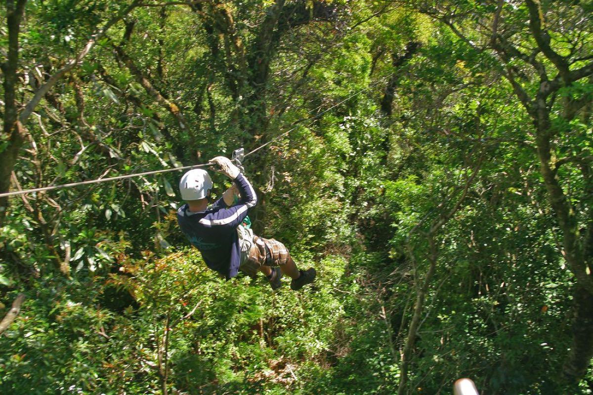 Canopy sobre las cataratas de Montezuma