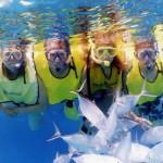 snorkeling montezuma